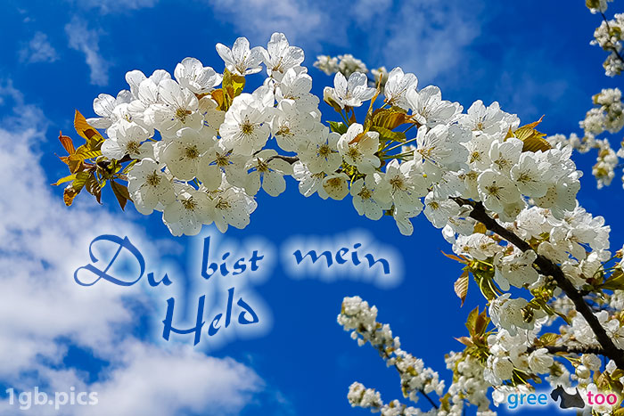 Kirschblueten Du Bist Mein Held Bild - 1gb.pics