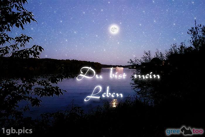 Mond Fluss Du Bist Mein Leben Bild - 1gb.pics