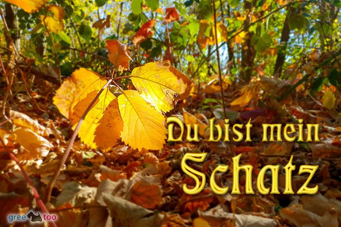 Du Bist Mein Schatz Bild - 1gb.pics
