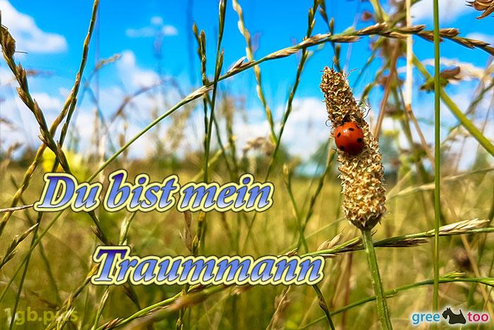 Marienkaefer Du Bist Mein Traummann Bild - 1gb.pics