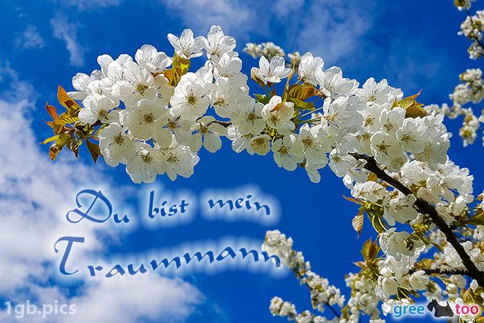 Kirschblueten Du Bist Mein Traummann Bild - 1gb.pics
