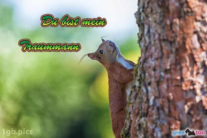 Eichhoernchen Du Bist Mein Traummann Bild - 1gb.pics