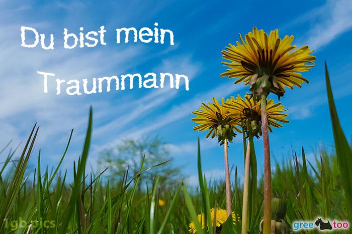 Loewenzahn Himmel Du Bist Mein Traummann Bild - 1gb.pics