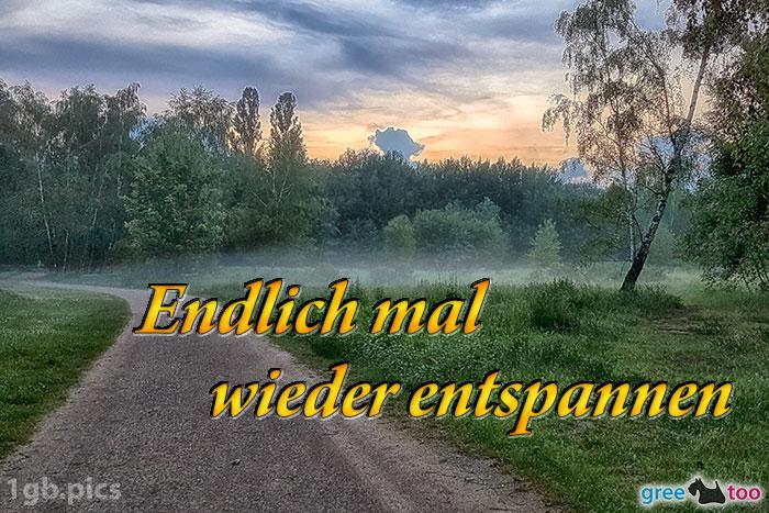 Nebel Endlich Entspannen Bild - 1gb.pics