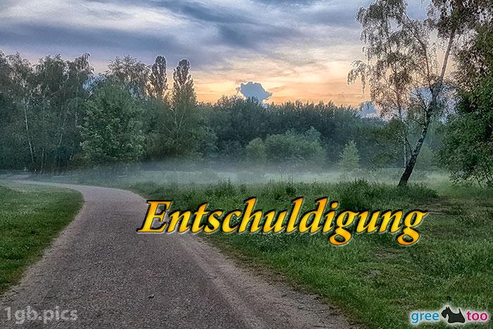 Nebel Entschuldigung Bild - 1gb.pics