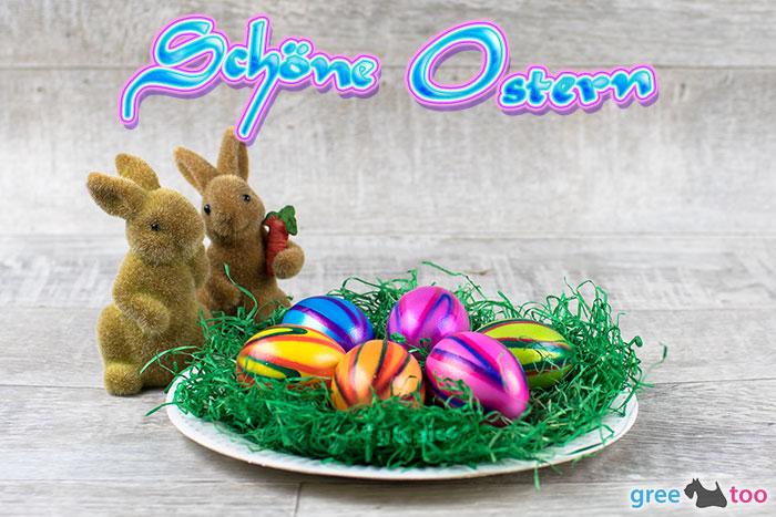 Schoene Ostern Bild - 1gb.pics