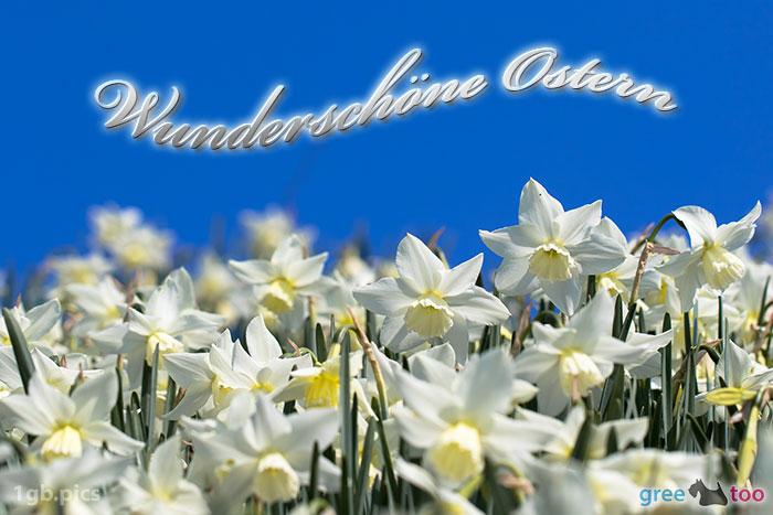 Wunderschoene Ostern Bild - 1gb.pics