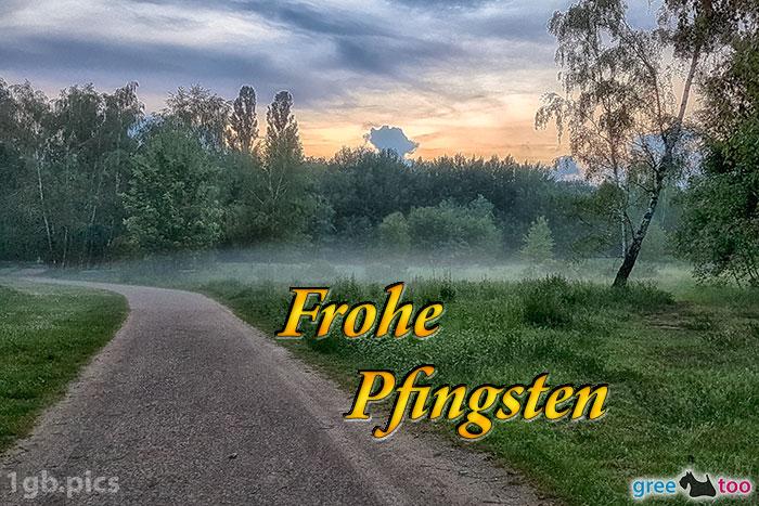 Frohe Pfingsten Bilder