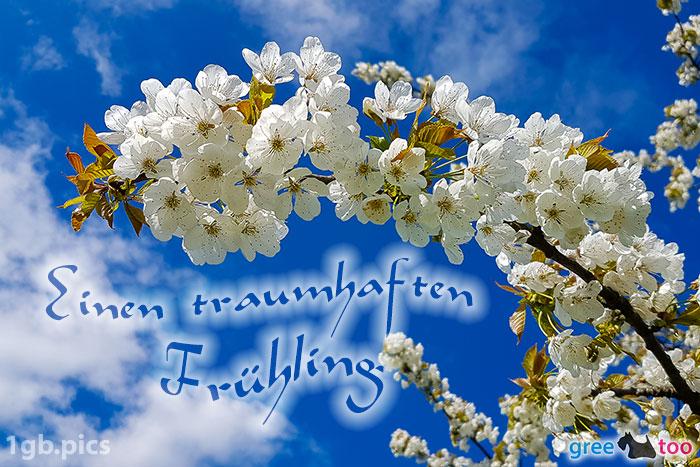 Kirschblueten Einen Traumhaften Fruehling Bild - 1gb.pics
