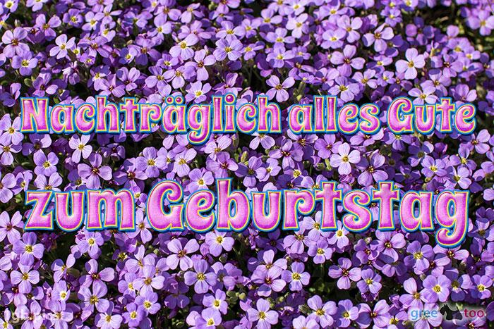 Nachtraeglich Wunderschoenen Geburtstag Bild - 1gb.pics