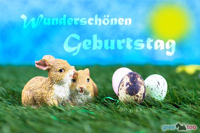 Wunderschoenen Geburtstag Bild - 1gb.pics