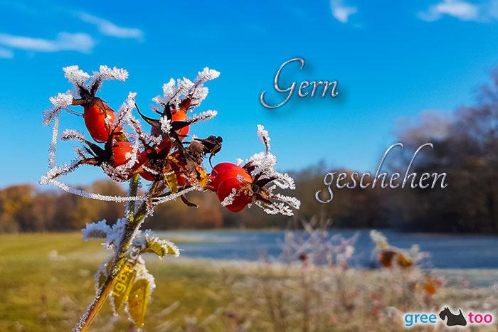 Gern Geschehen Bild - 1gb.pics