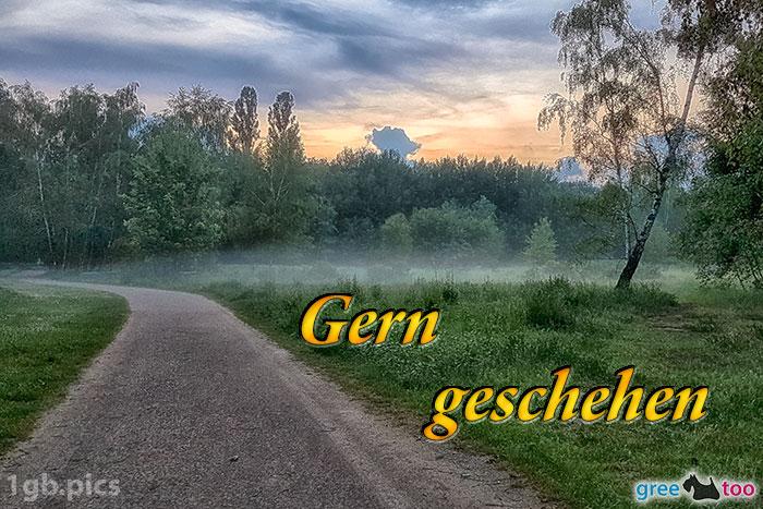 Nebel Gern Geschehen Bild - 1gb.pics