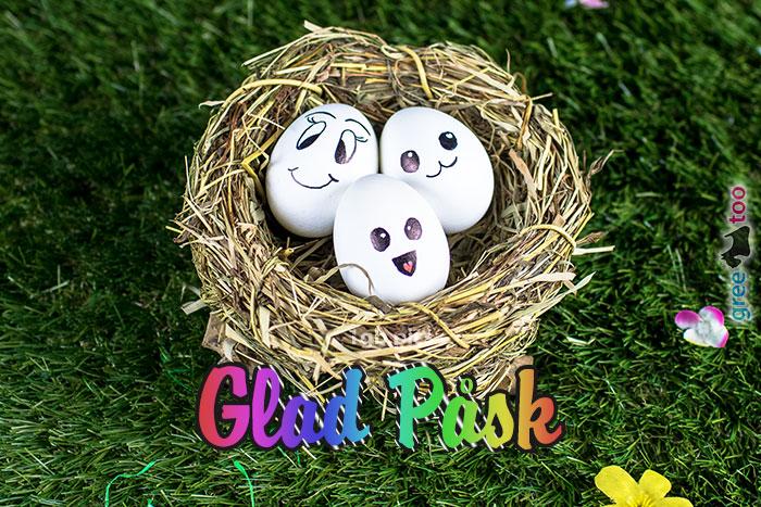 Glad Pask Bild - 1gb.pics