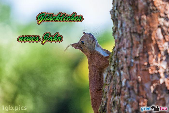 Eichhoernchen Glueckliches Neues Jahr Bild - 1gb.pics
