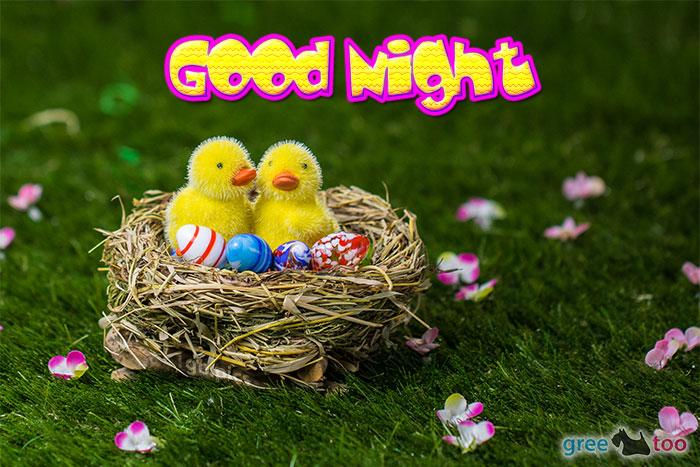 Good Night Bild - 1gb.pics