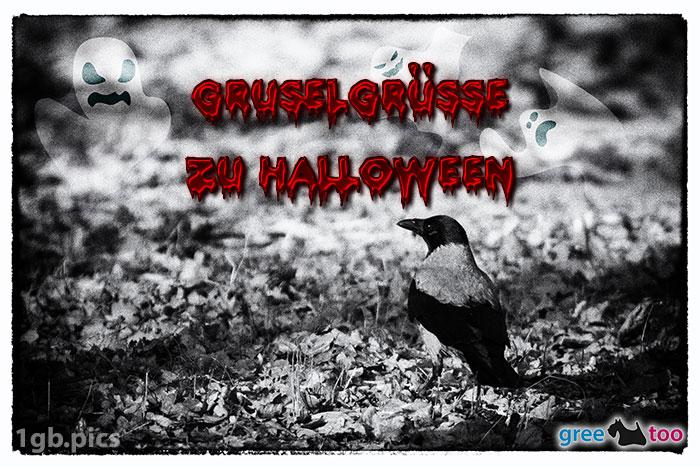 Kraehe Gruselgruesse Zu Halloween Bild - 1gb.pics