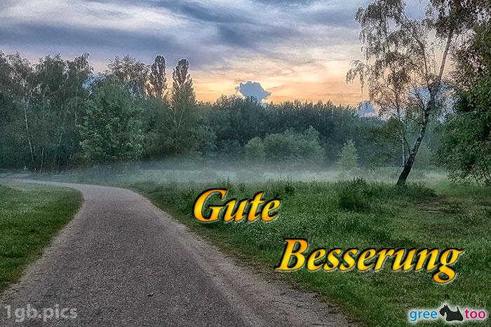 Nebel Gute Besserung Bild - 1gb.pics