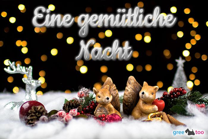 Gemuetliche Nacht Bild - 1gb.pics