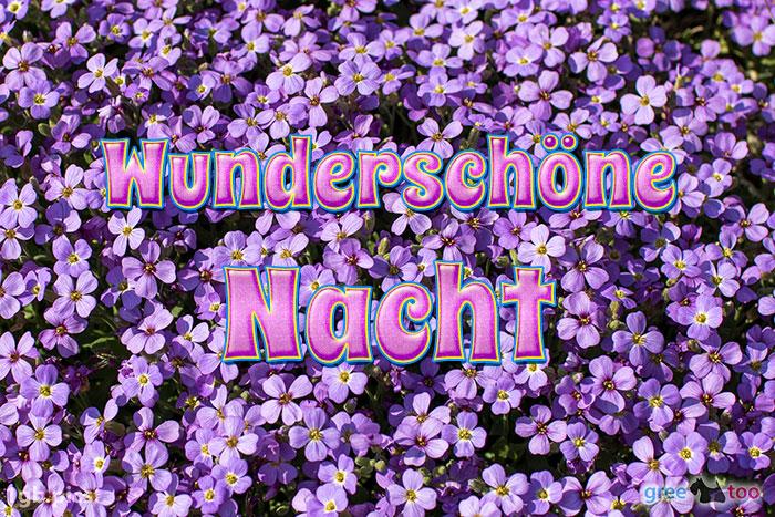 Wunderschoene Nacht Bild - 1gb.pics