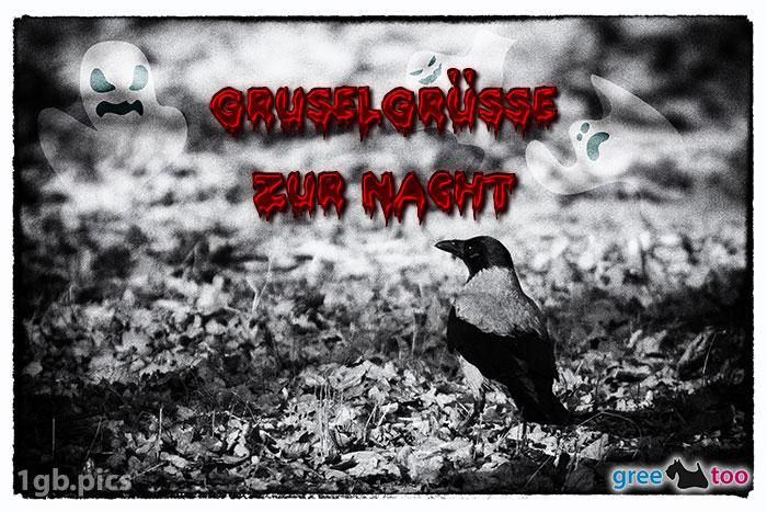 Kraehe Gruselgruesse Zur Nacht Bild - 1gb.pics