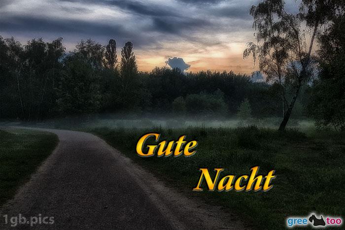 Nebel Gute Nacht Bild - 1gb.pics