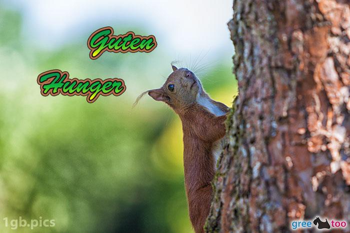Eichhoernchen Guten Hunger Bild - 1gb.pics