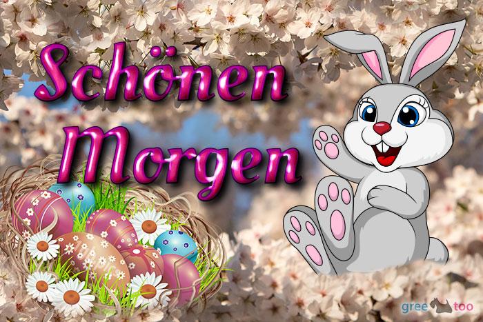 Schoenen Morgen Bild - 1gb.pics