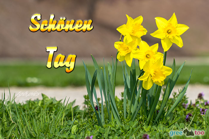 Schoenen Tag Bild - 1gb.pics