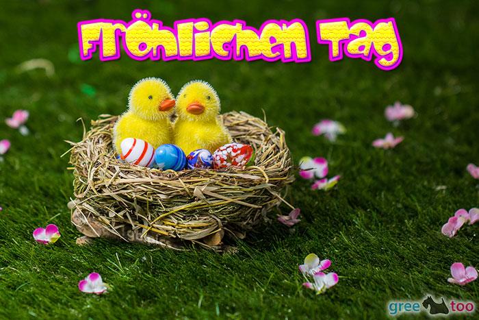 Froehlichen Tag Bild - 1gb.pics