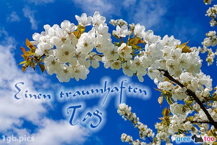 Kirschblueten Einen Traumhaften Tag Bild - 1gb.pics