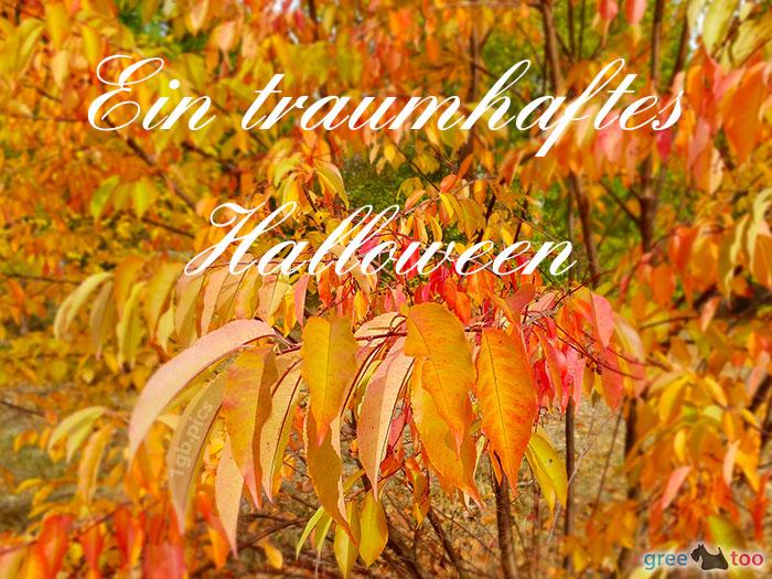 Ein Traumhaftes Halloween Bild - 1gb.pics