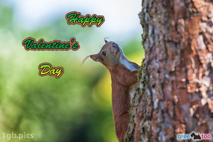 Eichhoernchen Happy Valentines Day Bild - 1gb.pics
