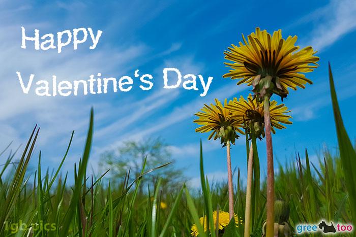 Loewenzahn Himmel Happy Valentines Day Bild - 1gb.pics