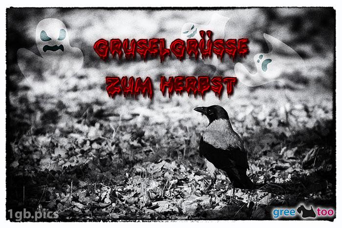 Kraehe Gruselgruesse Zum Herbst Bild - 1gb.pics