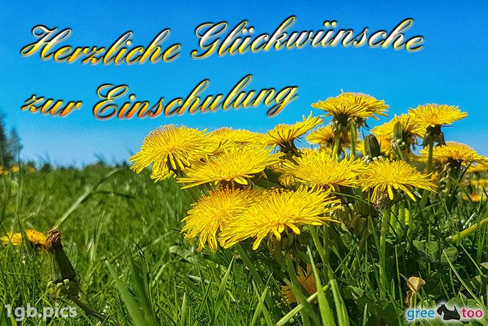 Loewenzahn Herzliche Glueckwuensche Zur Einschulung Bild - 1gb.pics