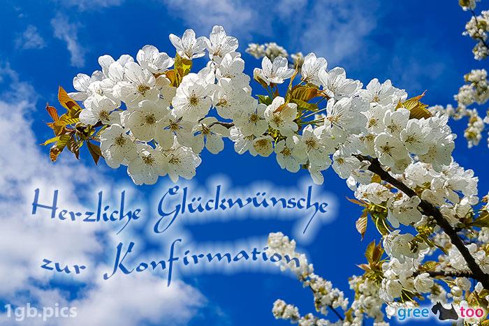 Kirschblueten Herzliche Glueckwuensche Zur Konfirmation Bild - 1gb.pics