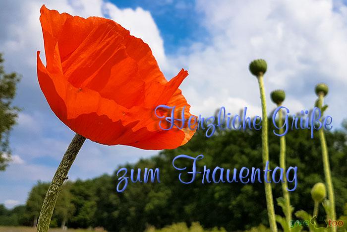 Herzliche Gruesse Frauentag Bild - 1gb.pics