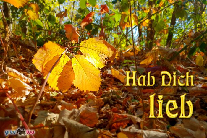 Hab Dich Lieb Bild - 1gb.pics