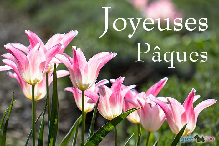 Joyeuses Paques Bild - 1gb.pics