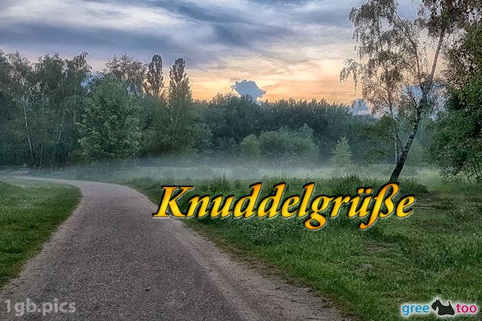 Nebel Knuddelgruesse Bild - 1gb.pics