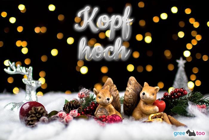Kopf Hoch von 1gbpics.com