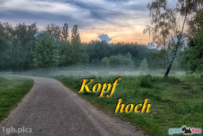 Nebel Kopf Hoch Bild - 1gb.pics