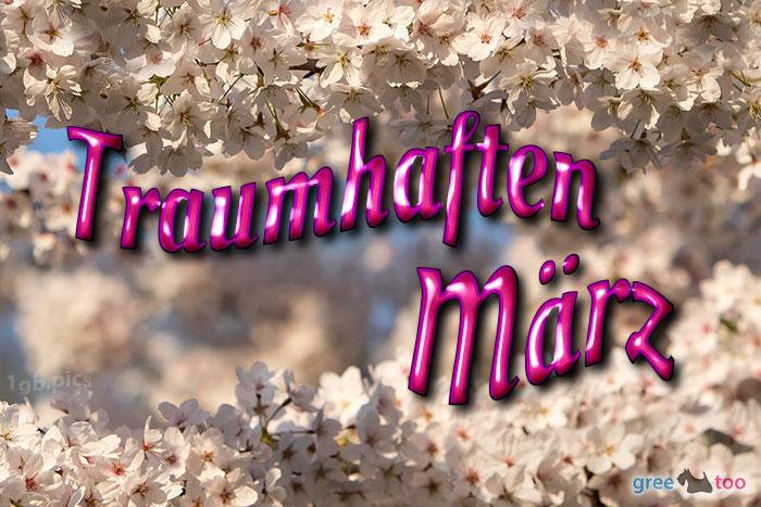 Traumhaften Maerz Bild - 1gb.pics