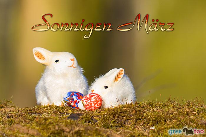 Sonnigen Maerz Bild - 1gb.pics