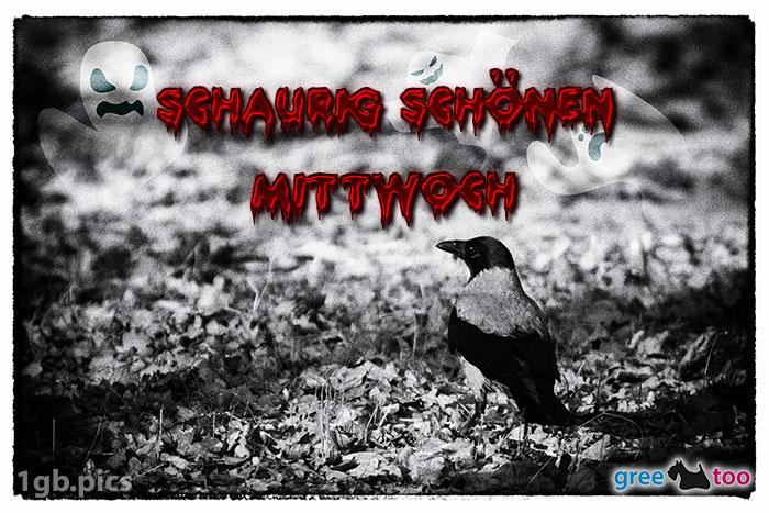 Kraehe Schaurig Schoenen Mittwoch Bild - 1gb.pics