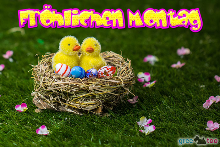 Froehlichen Montag Bild - 1gb.pics