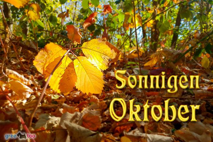 Sonnigen Oktober Bild - 1gb.pics