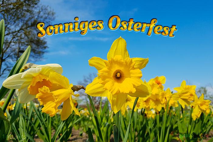 Sonniges Osterfest Bild - 1gb.pics