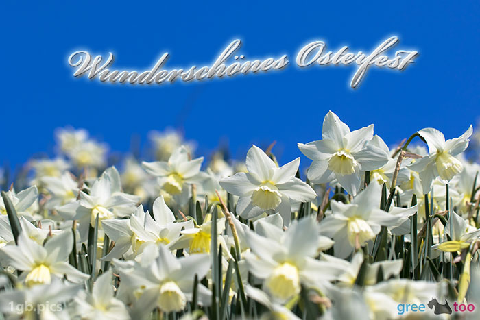 Wunderschoenes Osterfest Bild - 1gb.pics